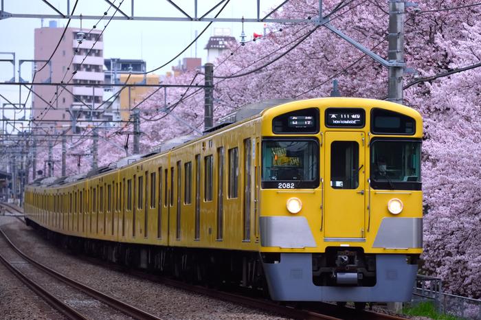 東伏見は、新宿や高田馬場まで乗り換え不要で30分ほど。吉祥寺も自転車で10分ほどの距離なので、気軽に遊びに行けます。ダイドードリンコアイスアリーナがあるので、スポーツ好きの人にもおすすめ!
