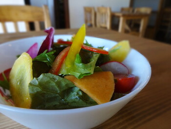 ランチに付いてくる鎌倉野菜を使ったサラダ。新鮮な旬の野菜がたっぷりと盛り付けられていて、カラフルな見た目を楽しめます。ドレッシングも美味しいと評判です。