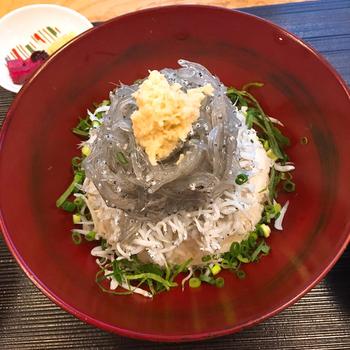 【生しらす丼(数量限定)】 鎌倉腰越で、その日の朝にとれた生しらすをたっぷりと使った生しらす丼。朝どりならではの新鮮で贅沢な味わいを楽しめます。全てのランチメニューには、赤だし・香の物がセットになっています。