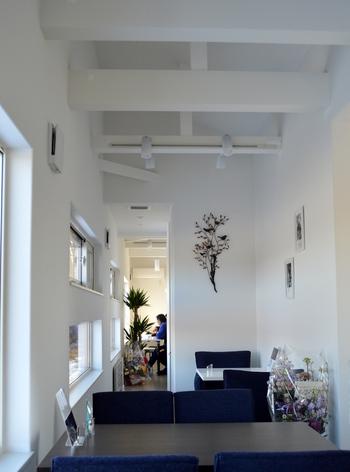 一軒家の内部は二階がカフェとなっています。見た目以上に奥行きのあるつくりで、真っ白で清潔感あふれる空間に癒やされます。