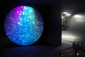 鮮やかな水槽のブルーと、時折透けて見える水晶のようなクラゲがもたらす幻想的なコントラスト空間は、まるで宇宙から地球を眺めているような、まさに《クラリウム》