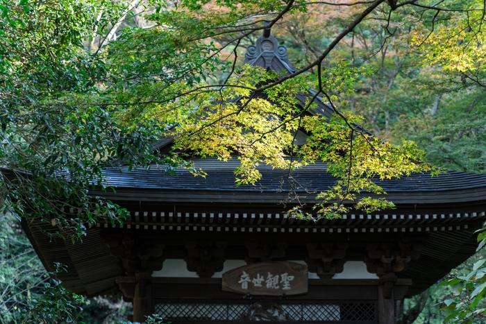 古都・北鎌倉で心ゆくまで味わう。大人時間を過ごせるグルメスポット保存版