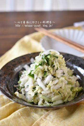 白菜の大量消費といえばスタンダードな塩漬けが思い浮かびますが、ちょっと目先を変えてサラダにしても。シャキシャキした歯ごたえとさっぱりした風味でオススメです。