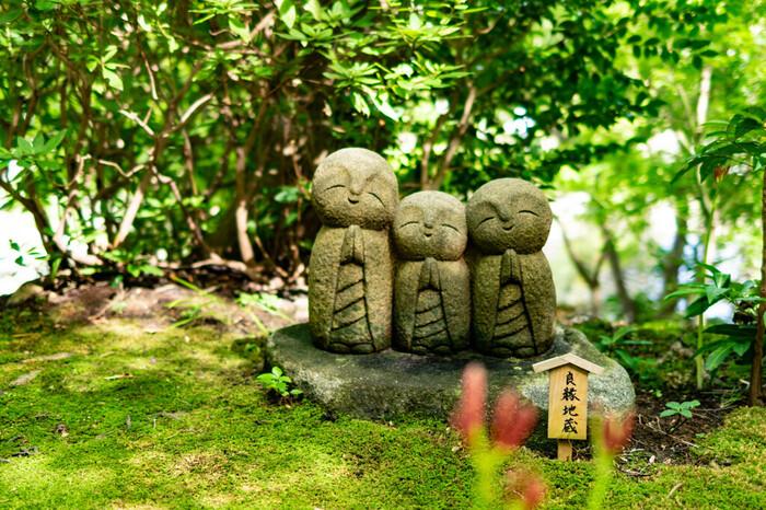 三が日は観音万燈会が行われます。初詣のシーズンを逃したとしても、雪化粧を纏った椿や、高台から望む由比ヶ浜海岸など、景色とお花の美しいコラボレーションを楽しめます。わざわざ足を運ぶ価値のある、鎌倉を代表するお寺の一つです。