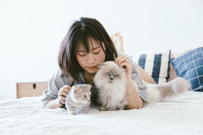 猫好きさんなら、本物の猫はもちろん、ぬいぐるみにもキュンとするはず。そんな胸がときめく猫のぬいぐるみを、お部屋に迎えてみませんか?個性たっぷりなぬいぐるみや、羊毛フェルトで手作りできるぬいぐるみなど、猫好きにはたまらないキュートな子たちをまとめてご紹介しましょう♪