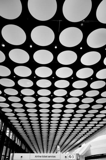 大きく開放感のある窓、見上げるとまるで美術館のような天井はワクワクしてしまいます。つい前だけをみてしまいがちですが、ぜひ天井にも注目してみてください!