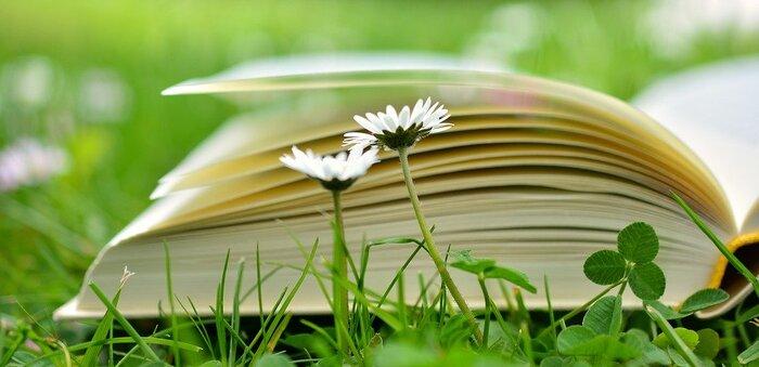 気の利いた大人向けギフトとしてもおすすめの「図鑑」や「辞典」。美しい写真、ウィットに富んだ文章など、こだわって作られた図鑑は、ぱらぱらとページをめくるだけでも、疲れた心を癒してくれます。