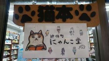 地下鉄A4出口からすぐ、神保町交差点にある姉川書店内の「神保町にゃんこ堂」は、とことん猫派の方におすすめの猫本専門店。猫が主役の物語や写真集など、常時400種類・2000冊以上の猫本を販売しています。