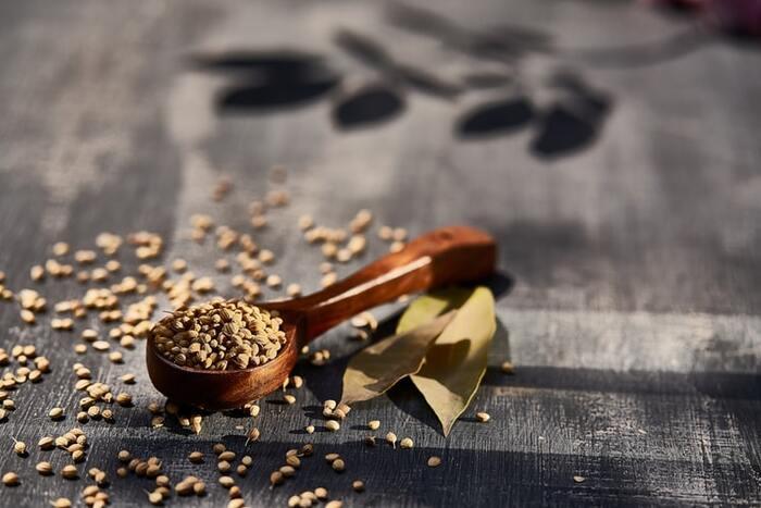 パクチー(香菜)の種子で、ホールのまま使うコリアンダーシードと、粉末にしたコリアンダーパウダーがあり、柑橘のような甘く爽やか香りが特徴。胃腸の働きを助け、関節痛にも効果があると言われます。