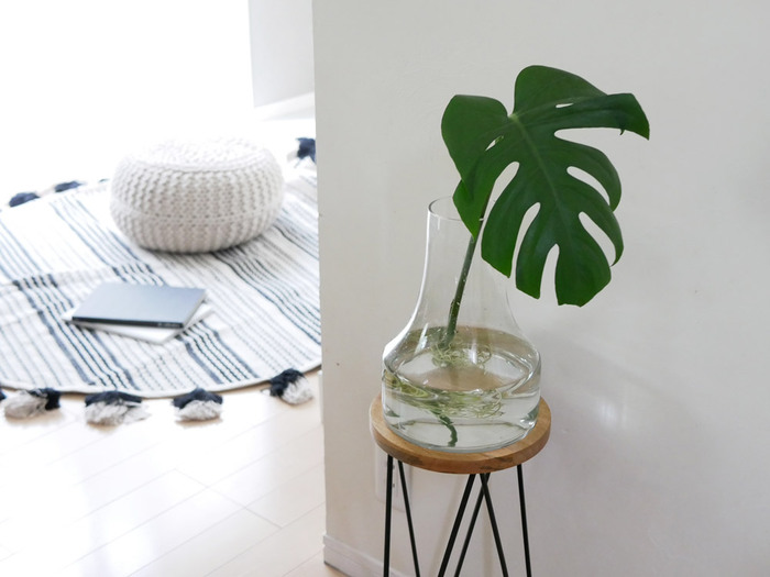 モンステラの葉など大ぶりの葉を飾るなら、水の美しさも楽しめるガラス製の花瓶が◎ たとえ葉1枚でも存在感たっぷり。こちらのようにスツールを台代わりにして飾っています。ガラスに透ける水の涼やかさが、屋外にいるような気持ち良さをもたらしています。