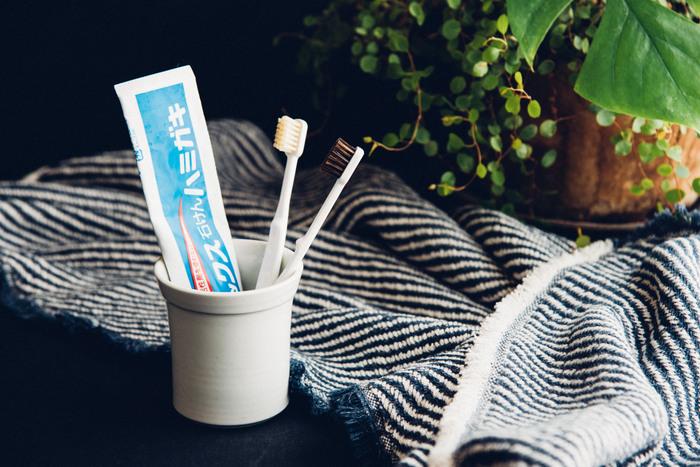 東京・日本橋にある1718年創業の江戸屋は、老舗の江戸刷毛の専門店。こちらの「歯ブラシ」は、やわらかくコシのある選び抜いた天然毛を使用しています。毛の密度が高く、歯にしっかりと密着するので使い心地も◎