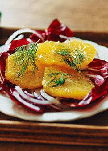 次にご紹介するのは、酸味が食欲をそそるオレンジに、トレビスと紫玉ねぎを合わせたおしゃれなサラダ。 トレビスは赤チコリとも呼ばれるイタリアの野菜で、ほのかな苦味が良いアクセントです。さらにディルも加えることで、簡単でシンプルなレシピながらプロの料理のような味わい深い一皿となります。