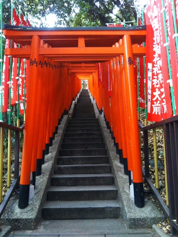 本殿までは階段をのぼりますが、ずらりと並んだ鳥居は圧巻。都心とは思えないほど、空気が澄み切って落ち着く神社です。