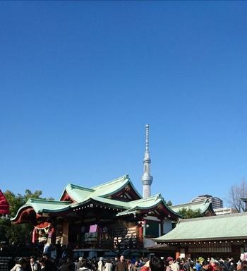 亀戸天神社の境内からは、スカイツリーを見ることができます。藤の花や梅、菊も有名なので、お参りと合わせて花を楽しむのもおすすめです。