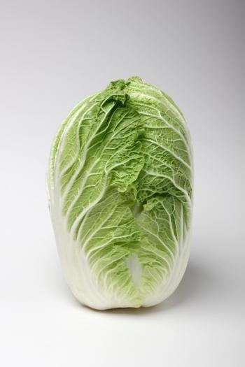 野菜売場では一年中見かける白菜ですが、夏白菜は4月~10月、冬白菜は11月~2月が旬。甘みがあるのは冬白菜です。 ほとんどが水分で、食物繊維のほかはカリウムやカルシウムなどのミネラル、ビタミンC、さまざまなアミノ酸などが含まれています。