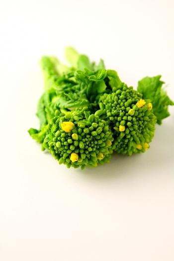 菜の花に含まれる豊富なβカロテンは、粘膜、皮膚、髪などの健康を守り、視力の維持に役立ちます。また、カルシウムやマグネシウム、カリウム、鉄などのミネラル、ビタミンB群の含有量も多く、栄養価の高い野菜です。