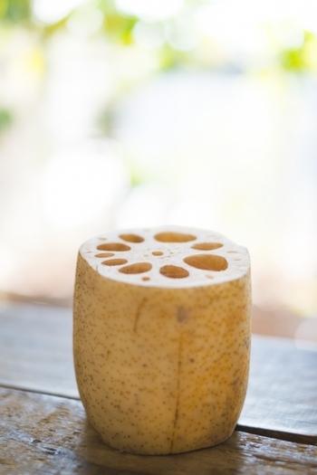 秋口に収穫される蓮根に比べ、冬物の蓮根は粘りが強く甘みが増します。疲労回復に役立つビタミンCが非常に豊富な上、粘りの元になっているムチンという成分が喉の粘膜を保護してくれるため、昔から咳止めや風邪予防にも重宝されてきました。また、切り口が茶色く変色するのはアクに含まれるポリフェノール類によるもの。抗炎症作用や胃粘膜の修復などの効果が期待できます。