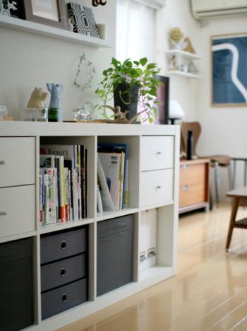 低めの棚を取り入れれば、収納としてだけでなく棚上をディスプレイコーナーとして使うこともできます。インテリアグリーンや雑貨を組み合わせて、自分らしくアレンジしてみてください。