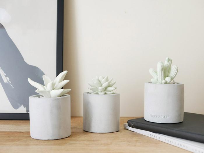 本物の植物のように見えますが、実は石膏でできた植物モチーフのアロマディフューザーなんです。セメントポットが中にあるアロマオイルを吸収することで香りが広がります。化粧石がセットになっているので、セッティングするとき鉢植えの疑似体験もできますよ。見て、香って楽しめるギフトです。