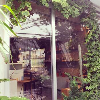 バス停から2分にある「haaz(ハーズ)白金台」。 白樺や月桂樹を素材としたオリジナルの家具をはじめ、同じく白樺を使ったハンドメイドの小物や、益子焼きのテーブルウエアといった雑貨まで幅広く扱っています。