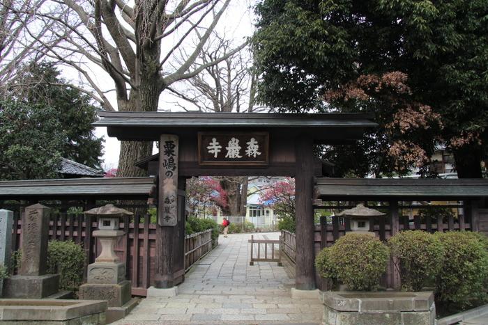 江戸時代にはすでに、針供養とお灸、富士講で名高い寺として知られ、多くの参詣者で賑わったと伝えられている森巌寺。境内にある淡島堂は一見すると仏堂のようですが、正式名は「北沢淡島明神社」と言い、神社の形式である拝殿・幣殿・本殿から成っています。毎年2月8日に行われる「森巌寺の針供養」は、世田谷区無形民俗文化財(風俗慣習)にも指定されています。 【住所】東京都世田谷区代沢3-27-1 【アクセス】小田急線・京王井の頭線「下北沢駅」より徒歩約8分