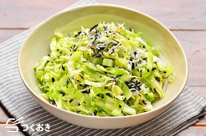野菜をいっぱい食べたいときに重宝するのが、こちらのキャベツサラダ。食べごたえがありながら、さっぱりといただけるので、たっぷりと食べられます。
