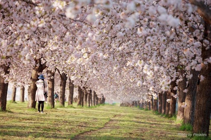 3月のアウター何着る?季節の変わり目のコーデカレンダー