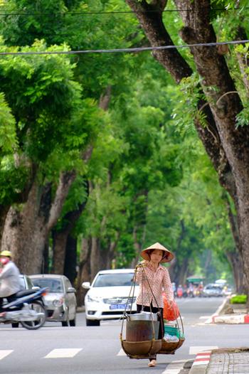 最近の旅行ブームでも人気が高い、東南アジアの「ベトナム」。職人の手作業が光るビーズ使いの雑貨、美しい民族衣装のアオザイを纏う人の姿・・・そしてはずせないのが、「ベトナム料理」ですよね。  野菜がふんだんに使われていて、ヘルシー。アオザイを着たベトナム女性のスタイルの良さも、秘訣は「ベトナム料理」にあるのかもしれませんよ*  今回はその「ベトナム料理」をお家でも味わえる、おすすめレシピをご紹介。