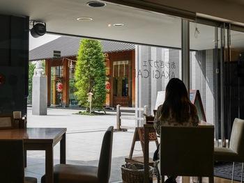 """「あかぎカフェ」からは境内を眺めることができます。再生プロジェクトのコンセプトが""""ヒトイキ""""の通り、ほっと安らげるデザインになっているそう。"""