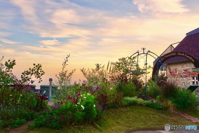 ここでは、約200種類75000株の花々やハーブが栽培されており、年間を通じて季節の花々やハーブの香りを楽しむことができます。