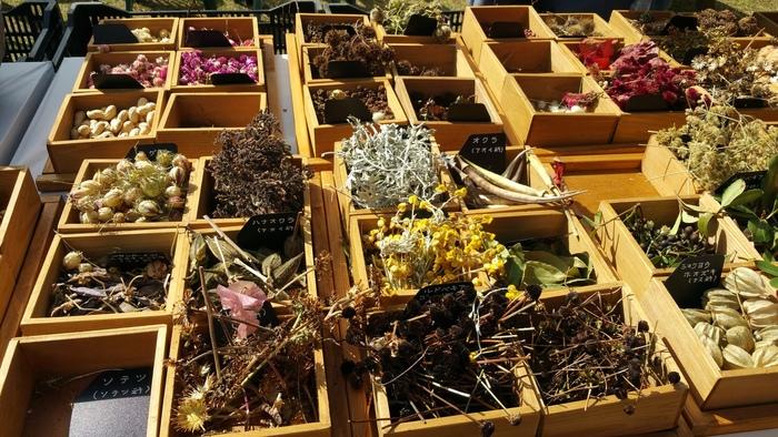 布引ハーブ園では、ハーブの苗、乾燥ハーブをはじめ、たくさんのお土産物が売られています。
