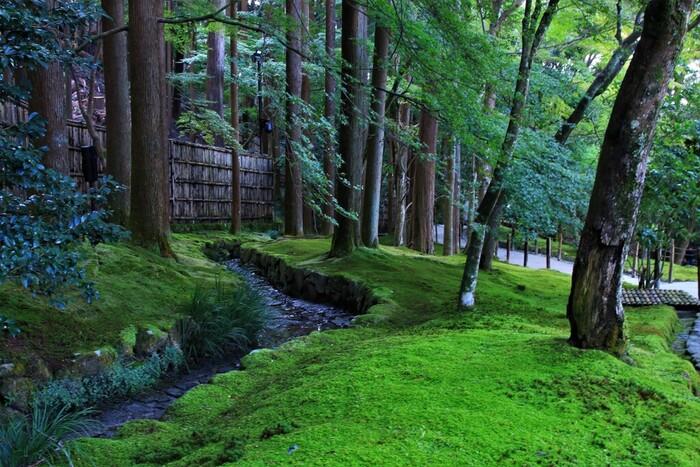 「詫び寂び」の世界観に魅せられて。世界遺産・東山慈照寺「銀閣寺」の見どころ