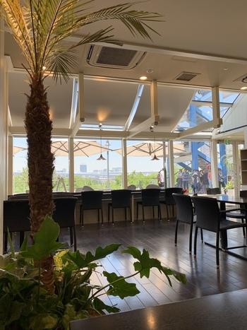 海が見えるお台場は、ハワイアンな雰囲気を楽しむのにぴったり!世界的にも希少なハワイ産のコーヒーがいただける「Island Vintage Coffee(アイランドヴィンテージコーヒー)」は、コーヒー好きにもおすすめの本格的なハワイアンカフェです。ビルズやアンカーズと同じ、デックス東京ビーチの3階にあります。
