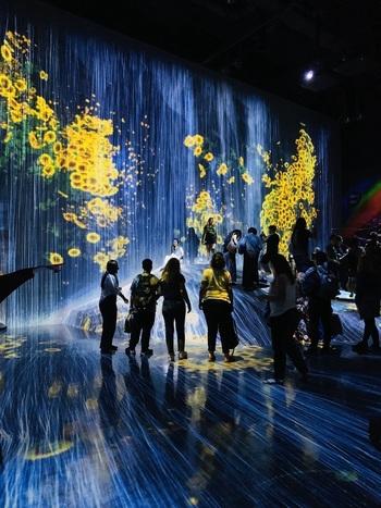 デジタルアート作品で有名なチームラボと森ビルによって運営されている、デジタルアートの美術館・チームラボボーダレス。2018年6月のオープン以降、国内外から多くの観光客が訪れ、一躍お台場の人気スポットとなりました。その一角にあるのが、今回ご紹介する「EN TEA HOUSE(エンティーハウス)幻花亭」です。