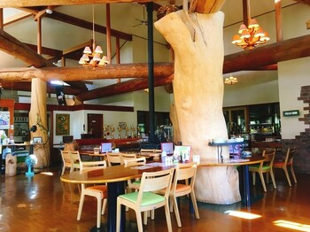 大きな木材を使用した店内は、自然のぬくもりを感じさせます。座席の間隔も広いので、地方ならではのゆったりとした空間も安らぎを与えてくれます。