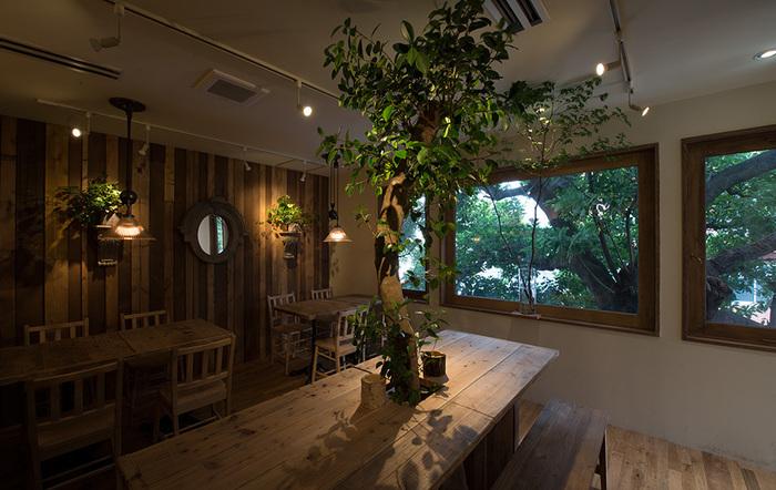 店内も木や緑を感じられ、都心であることを忘れられます。自然に癒やされながら、食事を楽しめるなんて最高ですね♪
