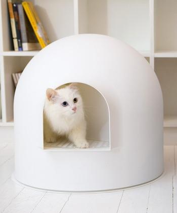 かまくらのようなドーム型がおしゃれな「pidan」の猫用トイレ。廊下がメッシュタイプなので、足に付着した砂を落としてくれます。