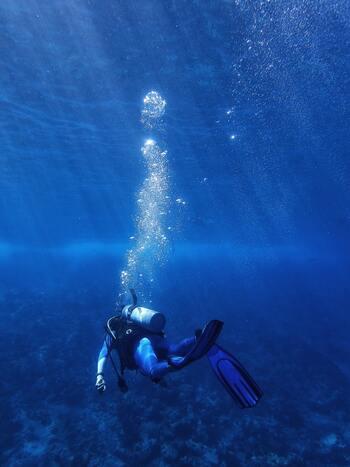 カリブ海に生きるサンゴや魚を保護するため、彫刻家ジェイソン・デケイズ・テイラー氏が手掛けた400体以上ものモニュメントを見ることができます。今では、モニュメントにもサンゴが付着しており、カンクンらしい神秘的な空間を演出しています。