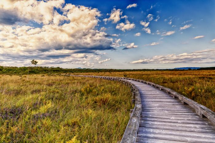 北海道有数の自然景勝地である釧路湿原は、日本最大級の大きさを誇る湿原です。物語の終盤にも二人の運命が動く重要な場所として登場します。天然記念物のタンチョウをはじめ、貴重な生物が見られることも魅力です。
