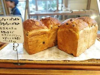 笠間周辺の農家さん連携し、旬のお野菜やフルーツを使ったパンもたくさん並んでいます。スペインのTAYSO社製の石窯を使用し、パンのルーツに近い焼き上げになるよう心がけているそう。