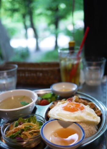 タイ料理をはじめ、様々なエスニック料理を楽しめます。本場の味を再現しつつ、日本人の味覚にあうように作られているのでとても食べやすいです!開放的な雰囲気はペット連れや、小さなお子様とでも気兼ねなく過ごせます◎