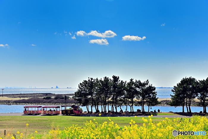 芝生×海×青空の広々とした空間は、なんとも言えない解放感で気分爽快。ブラブラお散歩しても、まったり芝生の上で寝転んでも感じる海の香りが、なんとも言えず心地良い時間を過ごさせてくれます。