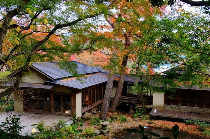 美術館奥には約15,000㎡の広大な庭園があり、豊かな木立の中、滝や池などの水景が一体となった、箱根の四季折々の姿を見ることができます。こちらは、昭和初期の日本家屋を改装した風流な飲食施設「開化亭」。紅葉の季節は特に人気で、多くの方が美しい風景を堪能しに訪れます。  美術館壁画正面には、100%源泉かけ流しの足湯カフェがあり、美術館鑑賞後の疲労回復にもおすすめ。鑑賞後も楽めることがたくさんあり、一日かけても足りないほど充実しています。