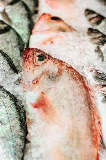 まずは鮮度の良いものを自分で確かめて選ぶことができます。魚の鮮度は魚の目で見極めましょう。目が濁っておらず透明感のあるものほど鮮度が高いということです。