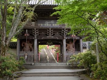 厳島神社から歩いて7分ほど行くと、宮島で最も歴史が深いとされるお寺「大聖院」があります。豊臣秀吉が茶会を開いたり、明治天皇が宿泊されたことでも知られています。