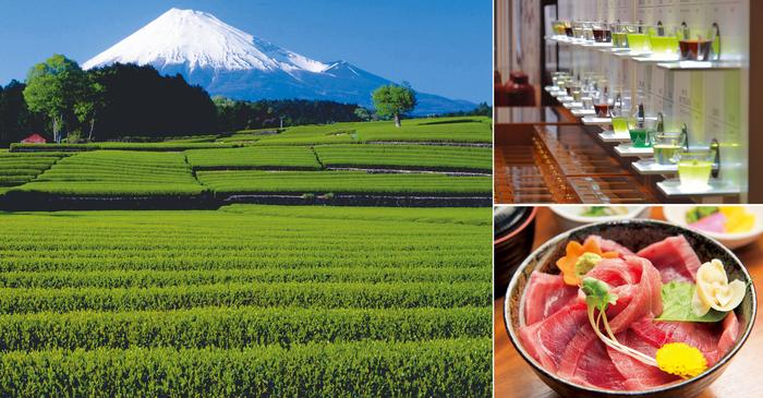 写真提供(左から時計回り):富士市、ふじのくに茶の都ミュージアム、まぐろ茶屋