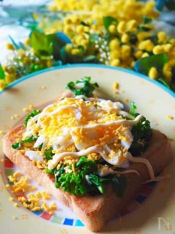 菜の花は、あらかじめレンジで加熱しておきます。バターを塗った食パンに菜の花をのせ、オーブントースターへ。焼き上がったら、白身をみじん切り・黄身を裏ごしした卵をのせ、マヨネーズをたっぷりと。