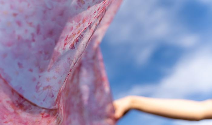 「桜」を見て、食べて、身につけて*食卓やファッションに春を呼び込もう