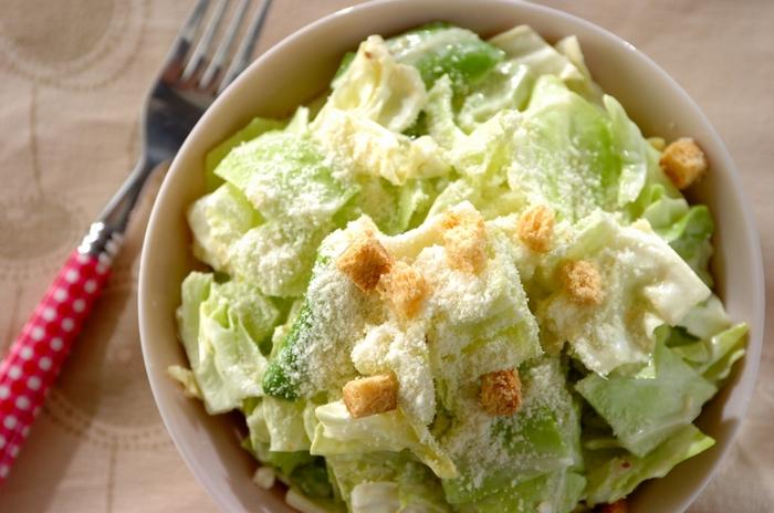 春キャベツは、葉が柔らかく、サラダにして食べるのにぴったり。マヨネーズ、粉チーズ、お酢、ニンニクを使ってシーザードレッシングを手作りできます。キャベツと和えたらクルトンを散らして召し上がれ。