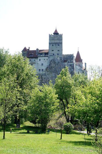 メルヘンチックな城とはちょっと違う、妖艶な魅力を持つこちら。トランシルヴァニア地方に建つ古城で、小説『吸血鬼ドラキュラ』に登場するのが、このブラン城だとされています。ドラキュラ伯爵のモデルと言われるウラド3世には残酷な逸話があり、複雑な背景を秘めた場所ではありますが、世界的に注目されている名城の1つです。